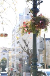 Kobe_8_2